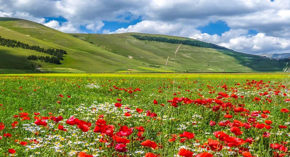אומבריה- ליבה הירוק של איטליה
